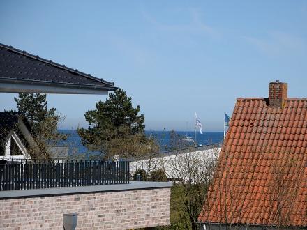 2406 - Strandwiese