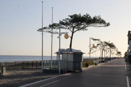 2504 - Strandwiese 15